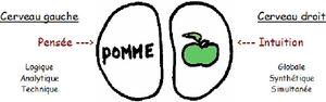 Alphabétique : Stanislas Dehaene, un pas décissif